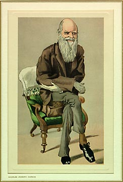 Uploaded Image: darwin2.jpg
